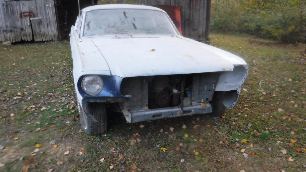 1965 FORD MUSTANG FASTBACK FASTBACK PROJECT - Photo